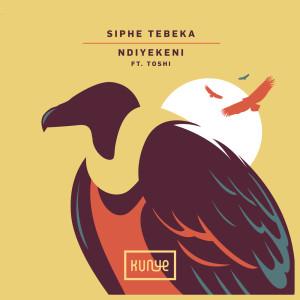 Album Ndiyekeni from Siphe Tebeka