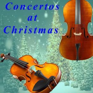 Album Tommaso Albinoni: Concertos at Christmas from Trevor Pinnock