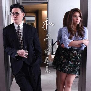Album He Mei Tian Jiang Zai Jian from 苏永康