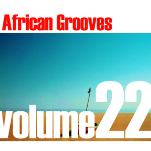 Album African Grooves Vol.22 from Various Artists