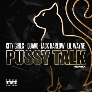 Album Pussy Talk (Remix) from Quavo