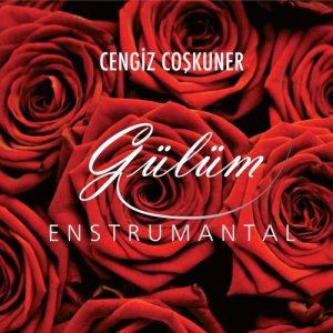Album Gülüm from Cengiz Coşkuner