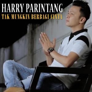 Harry Parintang - Tak Mungkin Berbagi Cinta