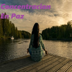 Album Concentracion en Paz from Paz