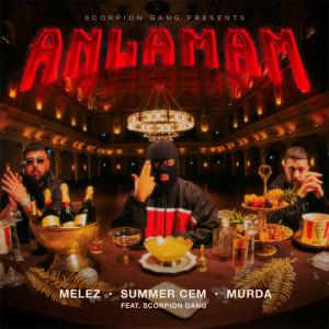 Album ANLAMAM (feat. Scorpion Gang) from Melez