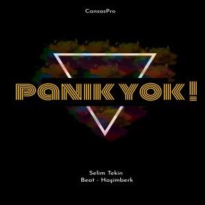 Selim Tekin的專輯Panik Yok (Explicit)