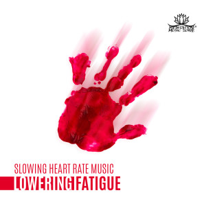 Album Slowing Heart Rate Music from Meditation Music Zone