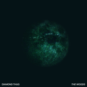 Listen to The Woods song with lyrics from Diamond Thug