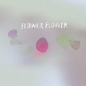 FLOWER FLOWER的專輯Tomoshibi