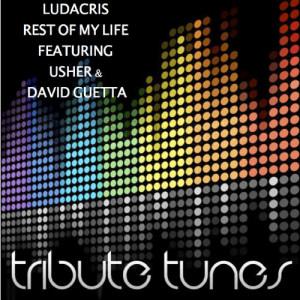 收聽Precision Tunes的Rest of My Life (Tribute to Ludacris Feat. Usher & David Guetta)歌詞歌曲