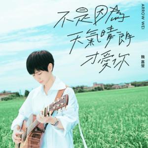 魏嘉瑩 Arrow Wei的專輯不是因為天氣晴朗才愛你