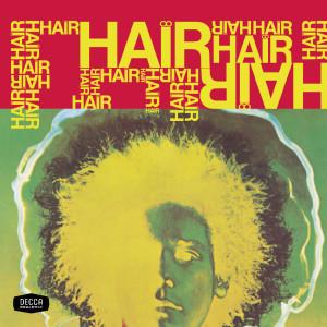 Hair 2001 群星