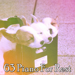 Album 63 Piano for Rest from Trouble Sleeping Music Universe