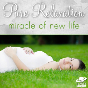 The Hit Co.的專輯Pure Relaxation: Miracle of New Life