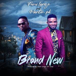Listen to Brand New song with lyrics from Femi Large