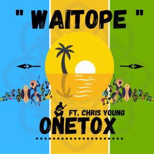 Chris Young的專輯Waitope (Remix)