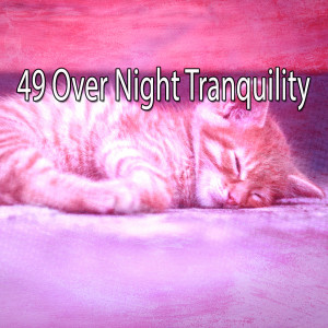 Baby Sleep的專輯49 Over Night Tranquility