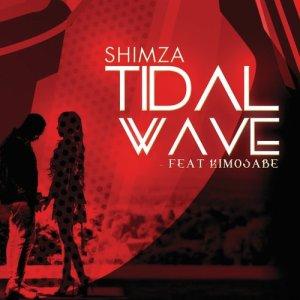 Album Tidal Wave from DJ Shimza