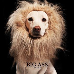 อัลบัม THE LION ศิลปิน Big Ass