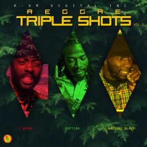 Album Reggae Triple Shots, Vol. 2 from Natural Black