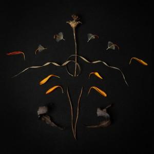 Album Reikdom from Vera Vinter