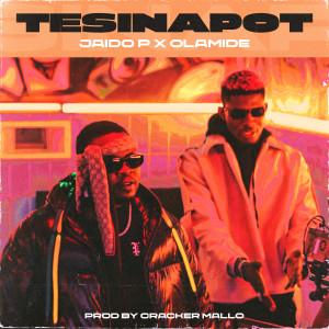 Album Tesina Pot from Olamide