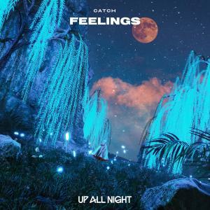 Album Feelings from Catch