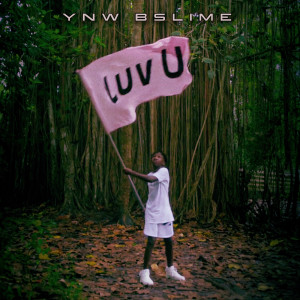 Album Luv U from YNW BSlime