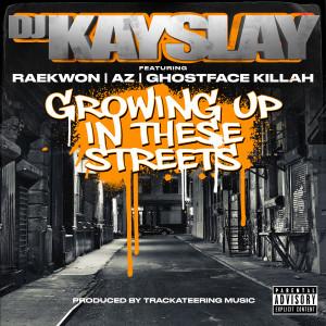 Album Growing Up In These Streets (feat. Raekwon, AZ & Ghostface Killah) from DJ Kay Slay