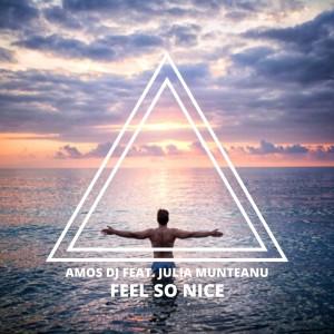 Amos DJ的專輯Feel so Nice