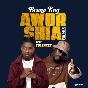 Album Aworshia (Remix) (Explicit) from Tulenkey