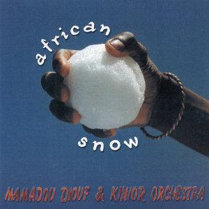 Album African Snow from Mamadou Diabate