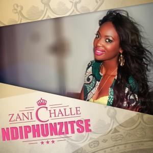 Album Ndiphunzitse from Zani Challé