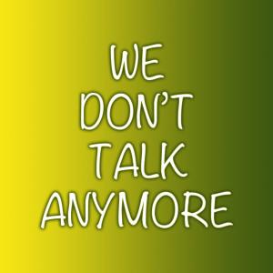 Album We Dont Talk Anymore from Zane Jayson Johns