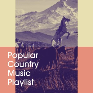 Album Popular Country Music Playlist from Country Rock Party