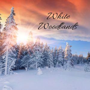 Easy Sleep Music的專輯White Woodlands