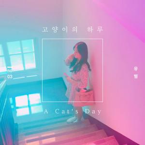 유별的專輯고양이의 하루