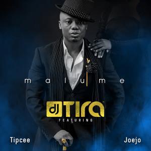 Album Malume from Joejo