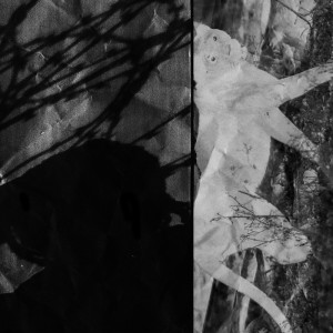 Album Pounce (Explicit) from Cadenza
