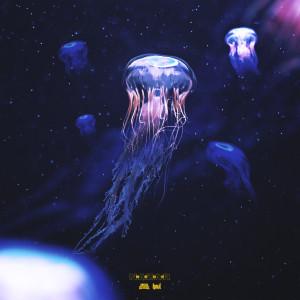 Album NAZAR from Bege