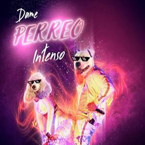 Album Perreo Intenso from Dj Perreo