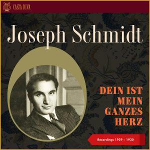 Album Dein ist mein Ganzes Herz - Recordings 1929 - 1930 from Berlin