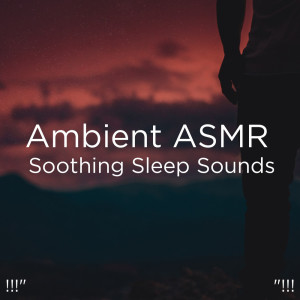 "Album !!!"" Ambient ASMR Soothing Sleep Sounds ""!!! from Deep Sleep"