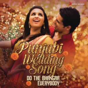 Album Punjabi Wedding Song from Various Artists