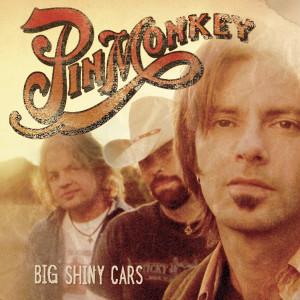 Big Shiny Cars 2006 Pinmonkey