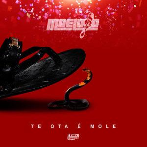 Listen to Te Ota E Mole song with lyrics from Moelogo