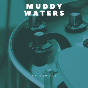 Muddy Waters的專輯At Newort