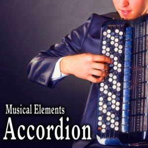 Sound Ideas的專輯Musical Elements – Accordion Sound Effects