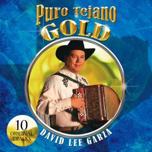 Puro Tejano Gold 2008 David Lee Garza
