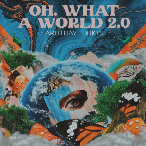 Album Oh, What a World 2.0 from Kacey Musgraves